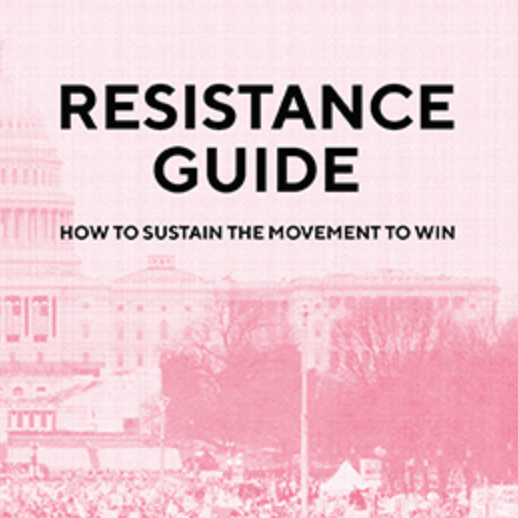 Resistance guide: How to sustain the movement to win (Book)